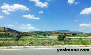 The view on the way to Bergama. How gorgeous is it?